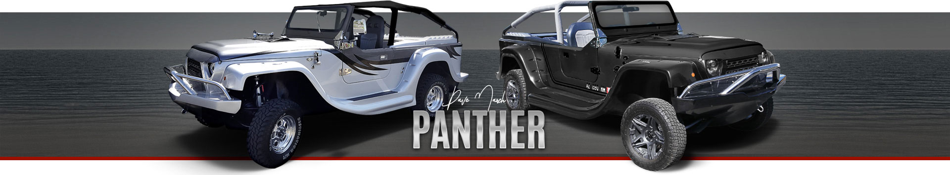 Panther-OurStory.jpg